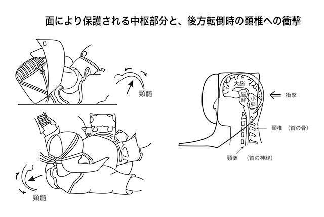 面により保護される中枢部分と、後方転倒時の頸椎への衝撃